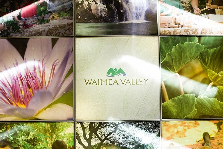 Waimea fall photo