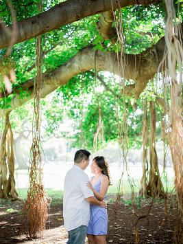 Engagement Banyan Tree, Kapiolani Beach Park